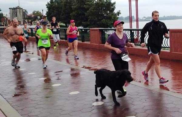 Boogie gewinnt Halbmarathon