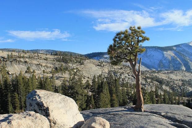 Yosemite Nationalpark Kalifornien