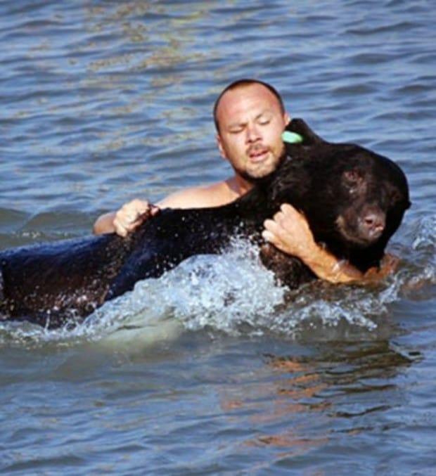 Heldenhafte Rettung eines Bären