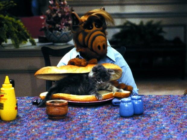 Alf und die Katzen